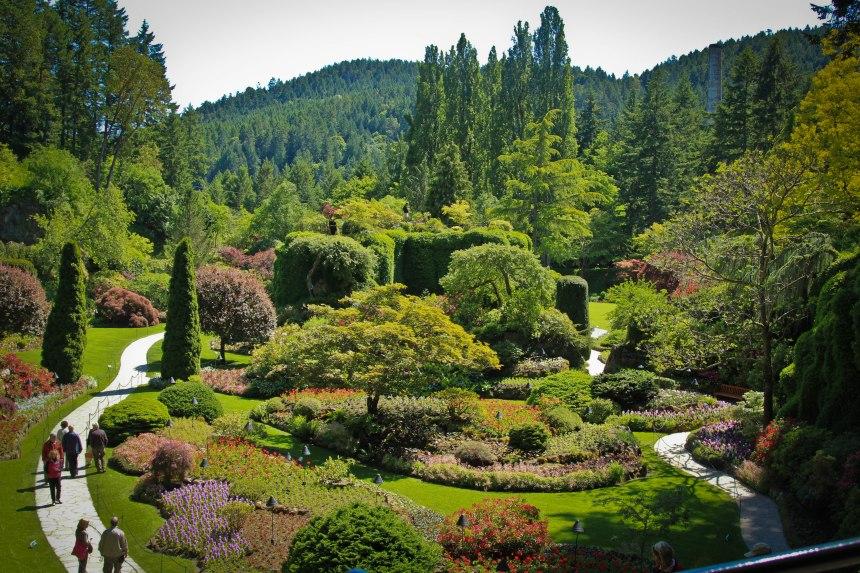 A magical hidden garden.
